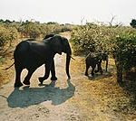 tour_southafrica_1