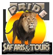 Pride Safaris