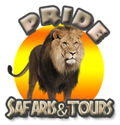 Pride Safaris & Borwa Africa Farm Tours